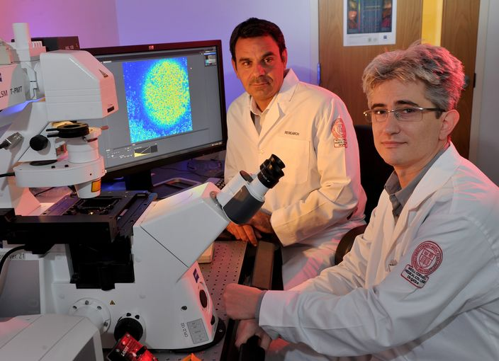 Dr Raphael Courjaret, Research Associate in Physiology and Biophysics, and Dr Khaled Machaca, Associate Dean for Research