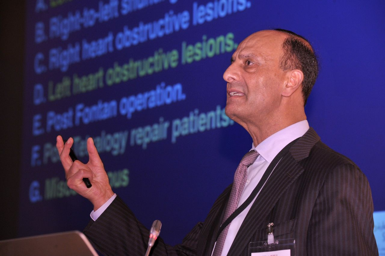 Professor Ziyad M Hijazi